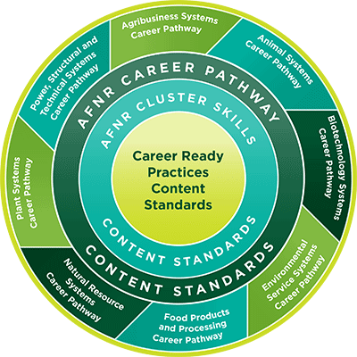 Council Standards - Circle Infographic